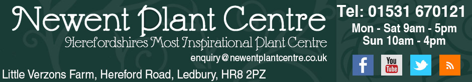 Newent Plant Centre
