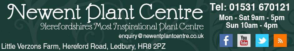 Newent Plant Centre